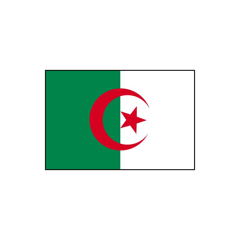 algerie-drapeau - Photo